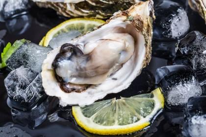 Harima Oyster - Sashimi Grade