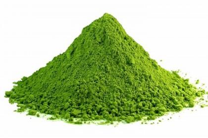Powdered Wasabi Premium 1kg